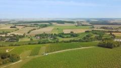 Drone Clip | Le vignes de Montigny
